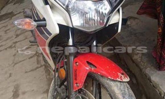 Buy Used Honda CBR Red Bike in Pokhara in Gandaki