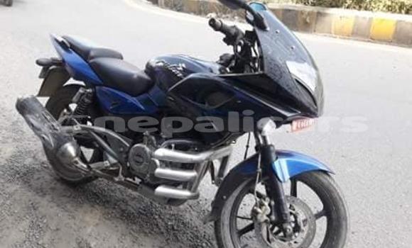 Buy Used Bajaj PULSAR Blue Bike in Lalitpur in Bagmati