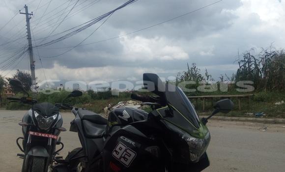 Buy Used Honda CBR Green Bike in Lalitpur in Bagmati